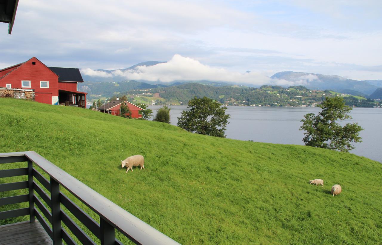 Norvégia körút autóval