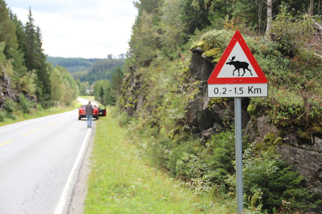Norvégia látnivalók utazás